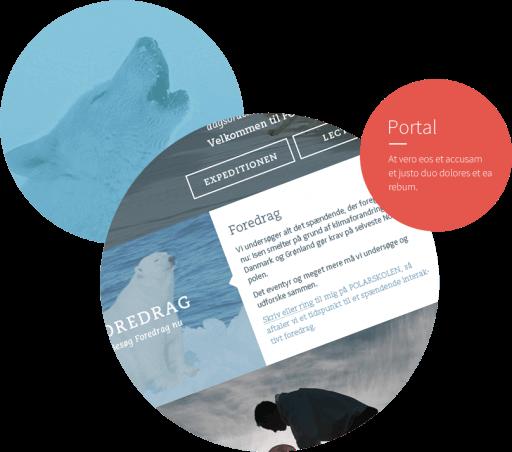 Referenzengrafik Polarskolen